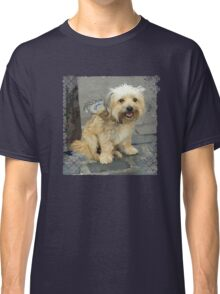 Louie the Shorkie-Tzu : Shih Tzu Yorkshire Terrier (Yorkie) Mix Classic T-Shirt