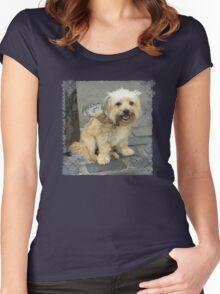 Louie the Shorkie-Tzu : Shih Tzu Yorkshire Terrier (Yorkie) Mix Women's Fitted Scoop T-Shirt
