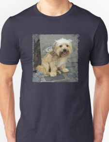 Louie the Shorkie-Tzu : Shih Tzu Yorkshire Terrier (Yorkie) Mix T-Shirt
