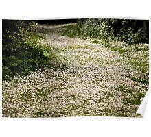Landscape - A View  Poster