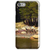 Mountain Lake Wildlife iPhone Case/Skin