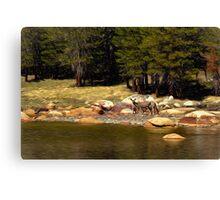 Mountain Lake Wildlife Canvas Print