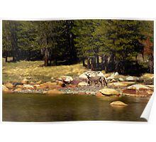 Mountain Lake Wildlife Poster