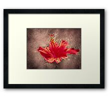 Hibiscus Red Framed Print