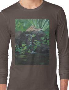 Fountain at the Zoo AC151223b-13 Long Sleeve T-Shirt