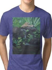 Fountain at the Zoo AC151223b-13 Tri-blend T-Shirt