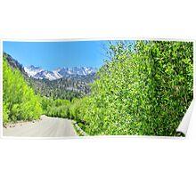 A Mountain Drive Poster