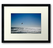 The bird Framed Print