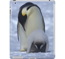 Emperor Penguin and Chick iPad Case/Skin