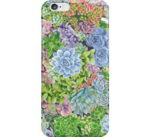 succulents! iPhone Case/Skin