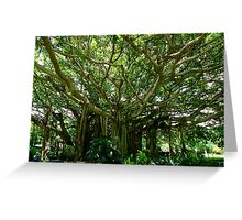 Awesome trees Greeting Card