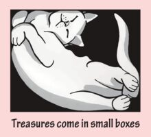 Cat in box 1 Kids Clothes