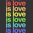 Love is love. by iamhamiltrash