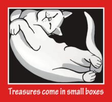 Treasures come in small boxes (2) Kids Tee