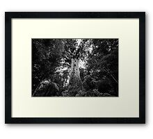 Lord of the Forest Framed Print