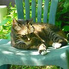 Mandi Taking it Easy  by Vivian Eagleson