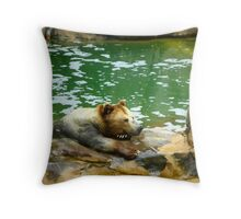Bear is not Amused Throw Pillow