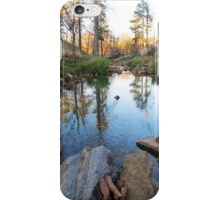 Beautiful Scene iPhone Case/Skin
