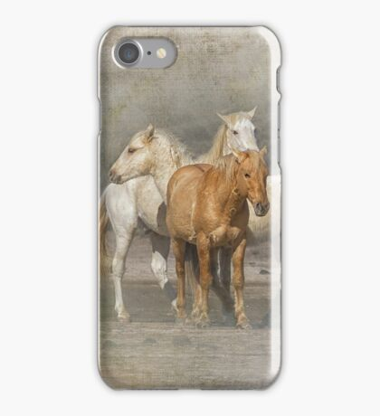 A Band of Horses iPhone Case/Skin