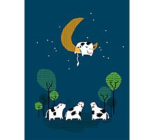 A Cow Jump over the moon Photographic Print