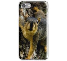 Whatcha Got There? iPhone Case/Skin