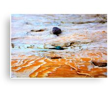 Bras d'Or Stones on Driftwood Canvas Print