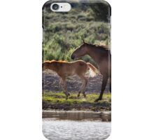 A Bay and Her Colt Running By The Waterhole iPhone Case/Skin