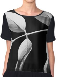 Robinia in Black & White Chiffon Top