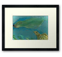 Lion Seal Frolic Framed Print