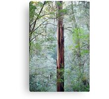 Standing out from the rest Canvas Print