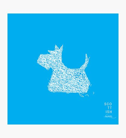 Scottish Terrier - Scribble Photographic Print