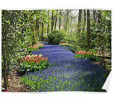 The Flower Lane, 2012, Keukenhof Gardens, Holland Poster