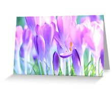 Springtime Bluebells Greeting Card