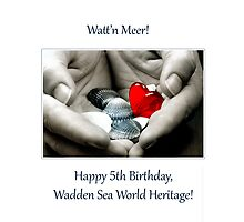 5th Birthday Wadden Sea World Heritage 2014 Pillow by SmoothBreeze7