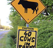 A funny roadside caution sign about party cows by GaryNeilCorbett