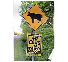 A funny roadside caution sign about party cows Poster