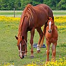 Mama and Baby by WeeZie