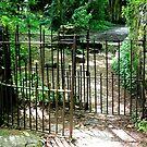Gate to the Island by Martha Sherman