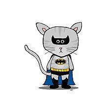 Batman DC - Gizmo The Cat Photographic Print