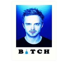 Jesse Pinkman Bitch Art Print