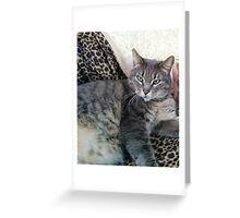 Purr Love Greeting Card