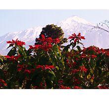 MOUNT TEIDE,SPAIN Photographic Print
