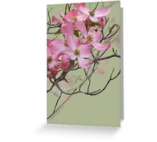 PINK SPRINGTIME DOGWOOD BLOSSOMS Greeting Card