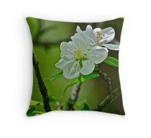 White Apple Blossom pillow 1 Throw Pillow