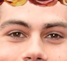 Dylan O'Brian Flower Crown Sticker