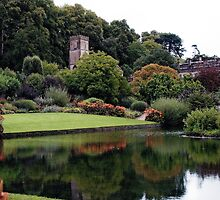 Dyrham Park - National Trust and English Heritage by Photography  by Mathilde