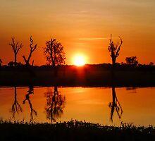 Outback Reflections #2, Kakadu National Park by Cherrybom