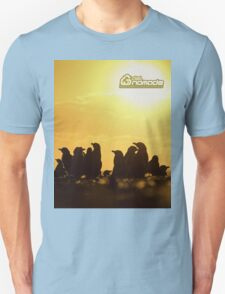 Sunset around penguins T-Shirt
