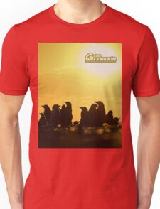 Sunset around penguins Unisex T-Shirt