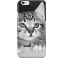 Kitten in a box 2 (non-clothing products) iPhone Case/Skin
